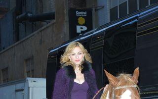Hollywood: Madonna, pasionată de călărie. Ce alte vedete iubesc caii?