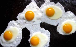 Dieta bogată în ouă, peşte şi carne, cea mai eficientă metodă de a slăbi