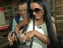 Daniela Crudu plimbă în poșetă un purcel