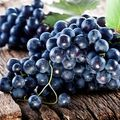 Dr Oz: 9 alimente care scad colesterolul şi protejează inima de boli