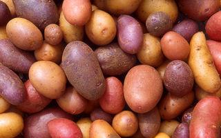 Un truc minunat: Cum să cureți cartofii în câteva secunde - VIDEO