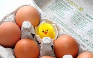 Studiu: Ouăle îi fac pe oameni să devină mai generoşi
