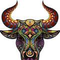 Horoscop. Cumpenele tale din săptămâna 16-22 februarie. Aflã ce spun astrele!