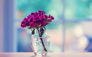 VIDEO: Cum să așezi perfect florile în vază