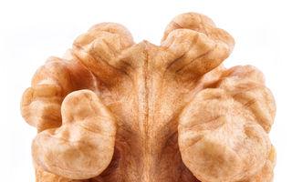 Sănătate: 5 alimente care-ţi stimulează creierul şi-l menţin tânăr