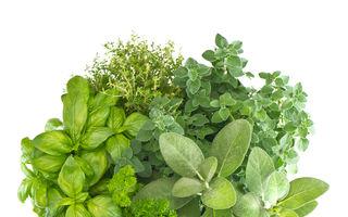 Dietă: 5 condimente care însănătoşesc felurile de mâncare