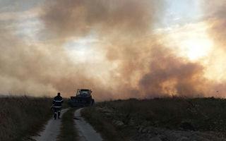 Dezastru pe plaja Vadu: Zeci de hectare de vegetaţie, arse de un incendiu - FOTO