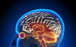 Descoperire medicală. Un test de sânge rapid care depistează boala Alzheimer din timp
