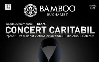 Concert caritabil cu peste 25 de artisti, in BAMBOO