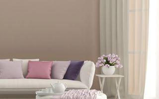 Tendințele toamnei pentru casa ta. Ce culori alegi?