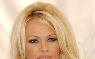 Pamela Anderson, ultimul nud al revistei Playboy