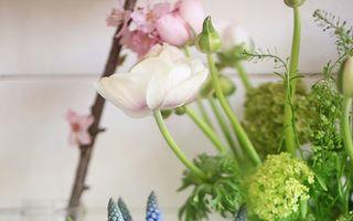 Casa ta. 30 de aranjamente florale în care să foloseşti bulbii de primăvară