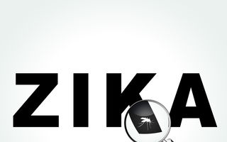 Virusul Zika. S-a descoperit că provoacă o nouă boală a creierului