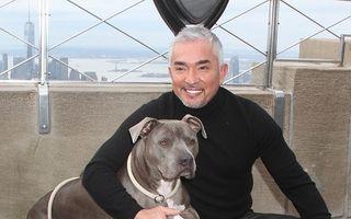 Cesar Millan nu va fi inculpat pentru cruzime față de animale