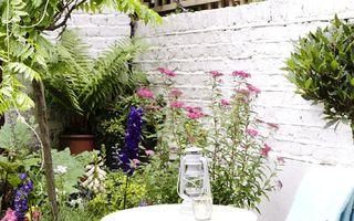 Casa ta. Cum să amenajezi o grădină mică. 40 de imagini