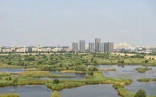 Decizie istorică pentru București: va fi înființat Parcul Natural Văcărești