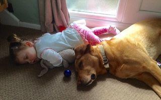 S-a terminat bateria! Cele mai tari poze în care copiii dorm pe unde apucă