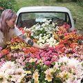 14 imagini care demonstrează că meseria de florăreasă e cea mai frumoasă