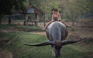 20 de imagini extraordinare care te vor impresiona