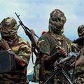 Un român a fost răpit în sudul Nigeriei