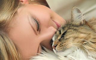 Ce înseamnă când visezi pisici