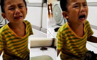 Reacţia unui copil de 4 ani după ce mama lui a omorât un gândac