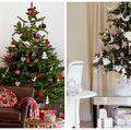 Brad de Crăciun pentru o locuință mică. Cum să-l alegi?
