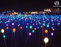 Câmpul magic de lumini, cea mai frumoasă instalaţie de Crăciun - FOTO