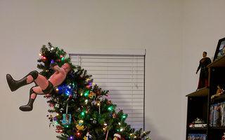 Cei mai urâţi brazi de Crăciun: Ce idei trăsnite!