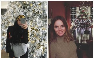 Cum şi-au împodobit vedetele brazii de Crăciun