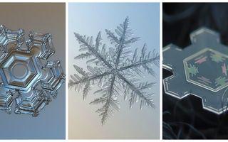 Formele incredibile ale fulgilor de zăpadă! 20 de fotografii care te vor uimi