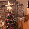Cum să-ți aperi bradul de Crăciun de animalul de companie. 20 de metode incredibil de amuzante