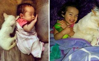 Prietene pe viaţă. Cum arată în imagini legătura specială dintre o fetiţă şi o pisică