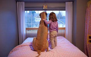 20 de imagini care arată că orice copil ar trebui să aibă un câine