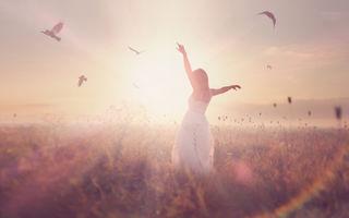 3 lucruri pe care le poți învăța despre succes de la păsări