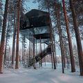 Hotelul din vârful bradului: Doar suedezii puteau să facă aşa ceva! - FOTO