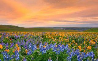 Cele mai colorate locuri din lume. 26 de imagini spectaculoase