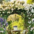 Cum să-ţi amenajezi grădina perfectă. 20 de imagini