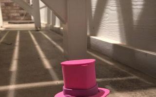 Broscuţa cu pălărie roz, cea mai simpatică apariţie pe internet - FOTO