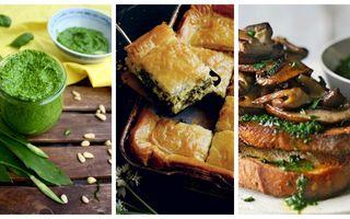 Cum să găteşti leurda? 25 de idei ca să o prepari în mai multe feluri