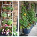 Cum să-ți amenajezi o grădină pe balcon. 20 de idei