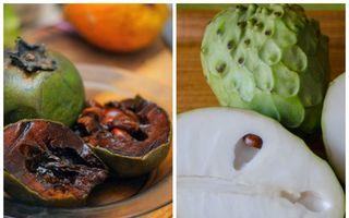 Arată ciudat, dar sunt foarte gustoase. 5 fructe exotice de care sigur nu ai auzit
