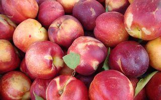 Cele mai murdare fructe și legume