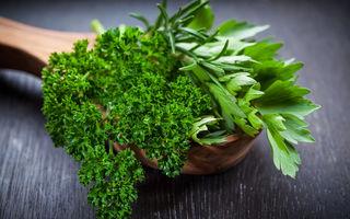 8 condimente pe care le poţi cultiva cu uşurinţă la tine în bucătărie