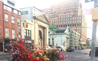 Un oraș mai frumos: Coșurile de gunoi, transformate în vase cu flori