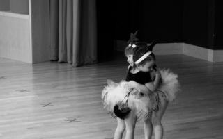 O îmbrăţişare şi e de ajuns! 20 de fotografii emoţionante