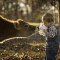 Viaţa la ţară: Cele mai frumoase amintiri pe care copiii le pot avea - FOTO