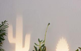 Lampa care se transformă în cactus când e aprinsă, un accesoriu pentru orice casă