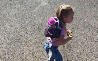 Scopul scuză zgarda: Explicaţia unui părinte care şi-a pus copilul în lesă a devenit virală pe internet