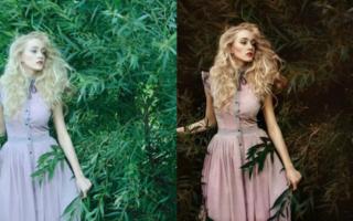 Photoshop-ul face minuni. 15 fotografii magice